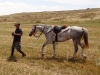 Yair and his Bedouin horse, K'helan