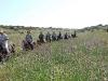 Lachish area
