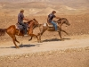 Galloping in Judea desert